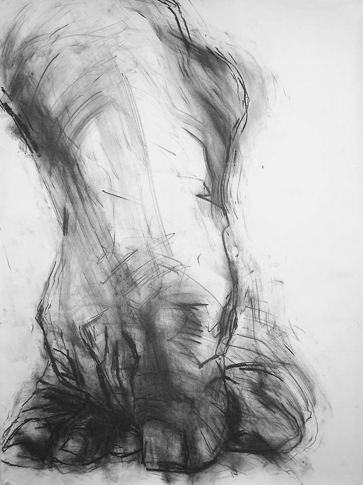 OEDIPUS DRAWING 1, 2007, charcoal on paper, 42 x 30 inches (106.7 x 76.2 cm).