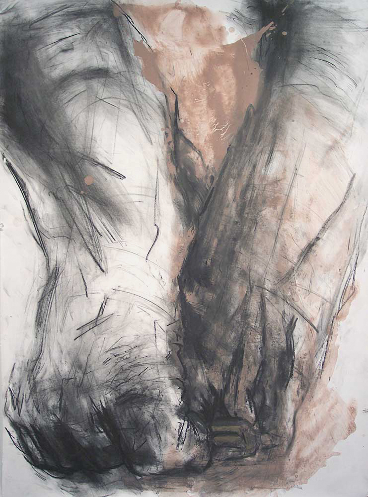 OEDIPUS DRAWING 6, 2007, charcoal and oil on paper, 42 x 30 inches (106.7 x 76.2 cm).